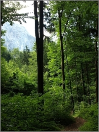 2013_08_Attersee_28